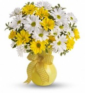 Crazy Daisies yellow or purple vase
