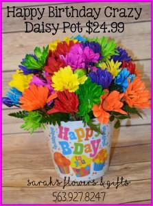Crazy Daisy Birthday Pot