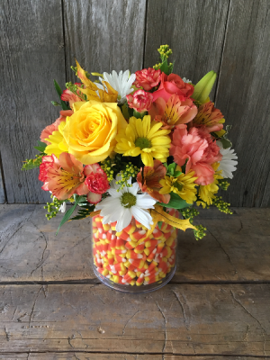 Crazy for Candy Corn   in Wray, CO | LEIGH FLORAL & GIFT