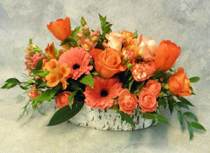 Crazy for Coral  Vibrant Fresh Flowers  in Ithaca, NY | BUSINESS IS BLOOMING