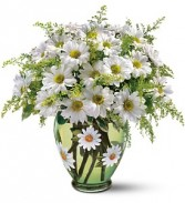 Crazy for Daisies Floral Bouquet