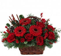 Crimson Christmas One Side