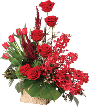 Crimson Class Floral Arrangement in Sunrise, FL | FLORIST24HRS.COM