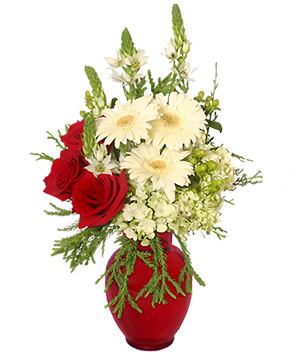 CRIMSON & CREAM Vase of Holiday Flowers in Keller, TX | MY BLOOMIN' FLOWER SHOP