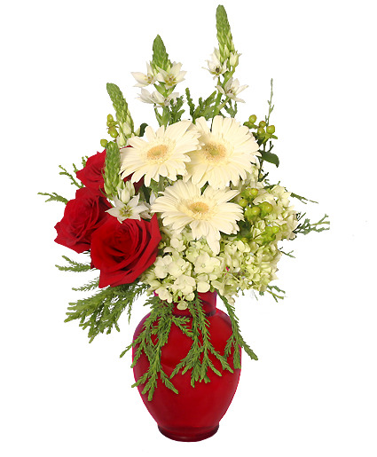 CRIMSON & CREAM Vase of Holiday Flowers