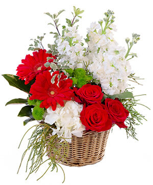 Crimson & Ivory Basket Arrangement in Modesto, CA | JANET'S FLOWERS & WEDDING CHAPEL