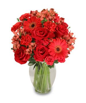 Charismatic Crimson Floral Arrangement in Michigan City, IN | WRIGHT'S FLOWERS AND GIFTS INC.