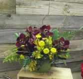Crimson Tide Container Arrangement