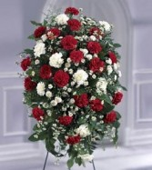 Crimson & White  Standing spray with carnations