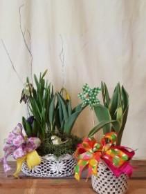 Crochet Gardens Shop special