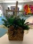 Cross Planter Plant