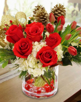 Croton Christmas Arrangement