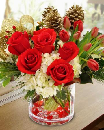Croton Christmas Arrangement