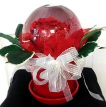 Crystal Ball Comforts Globe Rose Arrangement