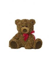 Cuddly Bear Plush