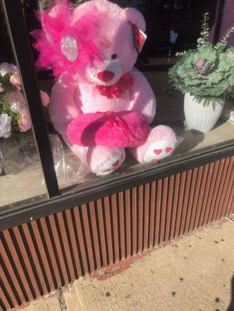 Cuddly Pink Bear