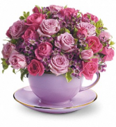Cup of Roses T210