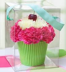 Cupcake in Bloom