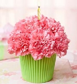 Cupcake in Bloom For Mom Carnations delivered in a cake box