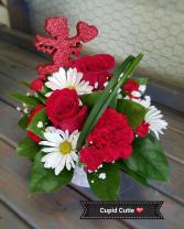 Cupid Cutie Valentine's Day