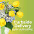 Curbside Pick and Porch Deliveries!