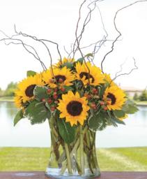 Stunning Sunflowers Mother's Day Arrangement