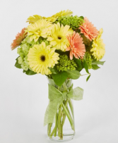 Mixed bouquet of assorted gerberas and hydrangeas Mother's Day Arrangement