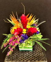 custom 49 Arrangement