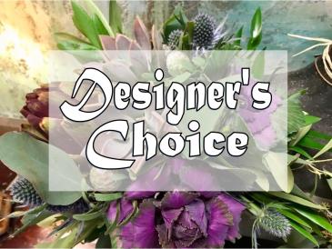 Designer's Choice Everyday