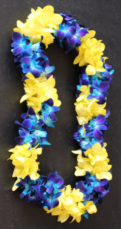 CUSTOM BLUE/YELLOW DOUBLE ORCHID LEI GRADUATION LEI