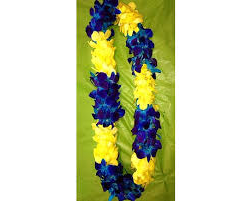 CUSTOM BLUE/YELLOW ORCHID LEI  GRADUATION LEI