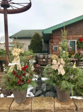 Custom Decorative Patio Pots Mixed evergreens in plastic container