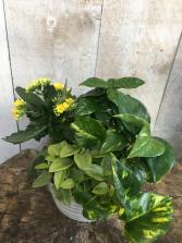 Custom Tropical Planter