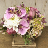 Cut Orchids in Wood