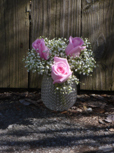 Cute 3 Soft Pink Roses In Cute Bubble Glass Shown at $25.00