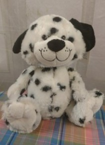 Cute and Soft  Dalmation Pup by Ganz