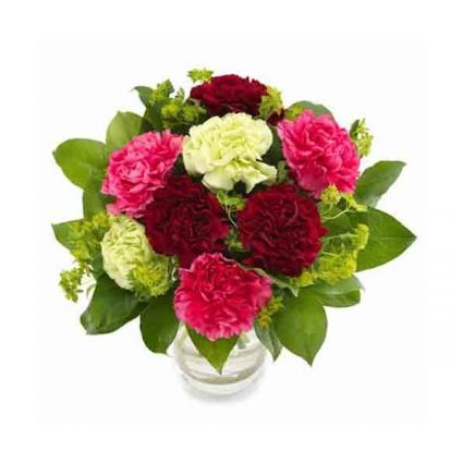 Cute Carnations Vase Arrangement