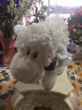 Cute Cuddly Lamb Plushy