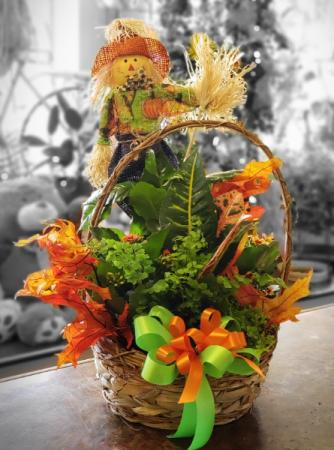 Cute scarecrow  Dish Garden