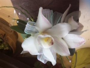 Cybidium Orchid Corsage Corsage in Fairfield, CT | Blossoms at Dailey's Flower Shop
