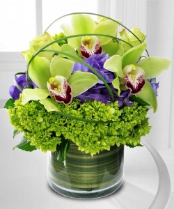 CYMBIDIUM DELIGHT Flower arrangement in Burbank, CA | MY BELLA FLOWER