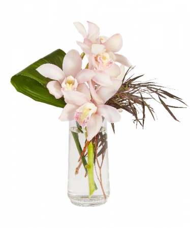 Cymbidium Floral Vase Arrangement