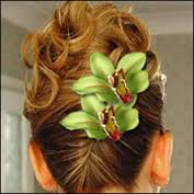 Cymbidium Hair Flowers