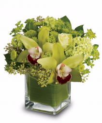 Cymbidium Orchids Cube Arrangement