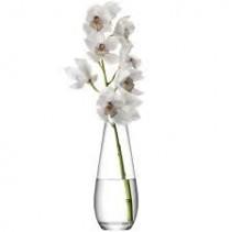 Cymbidium Orchid Bloom Arrangement
