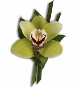 Cymbidium Orchid Boutonnieres in Chatham, NJ | SUNNYWOODS FLORIST