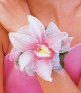 CYMBIDIUM ORCHID CORSAGE OR WRISTLET