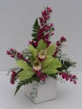 Cymbidium Orchid Cube Arrangement