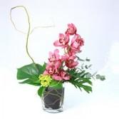 Cymbidium orchid in vase