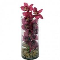 Cymbidium Orchid Rising Vase Arrangement